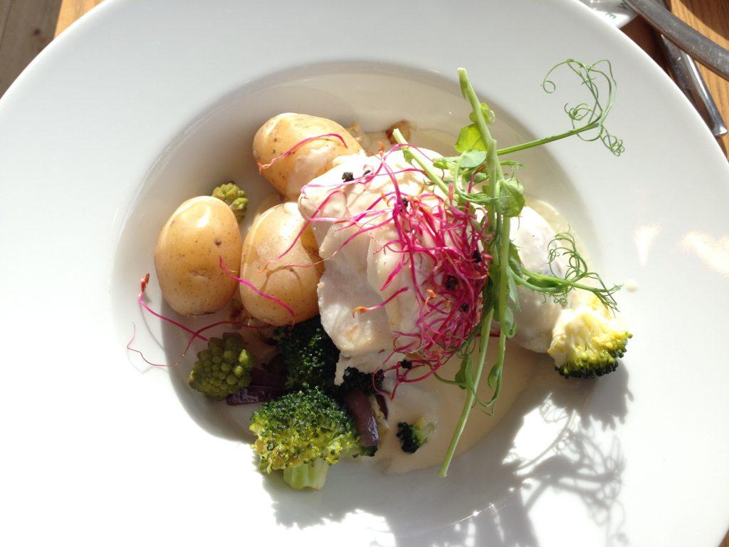 Fish Meal Gothenburg, Sweden Muslim traveller